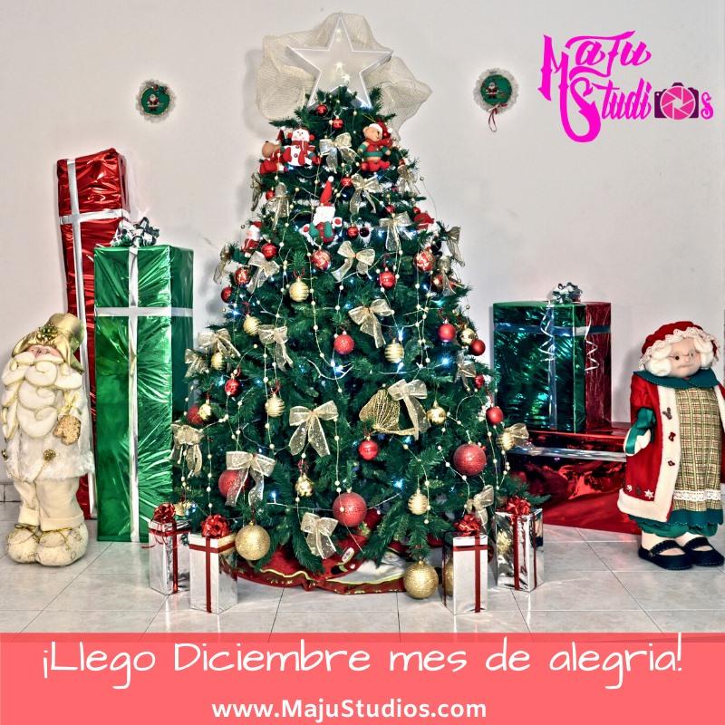 Feliz Navidad 2019 MaJu Studios