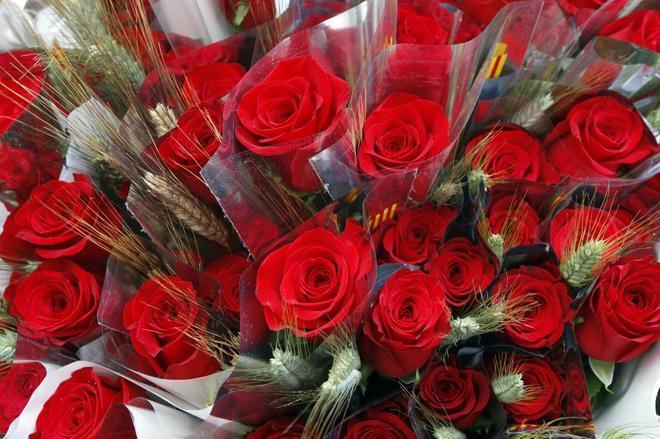 Rosas rojas dia de la mujer en Maju Studios